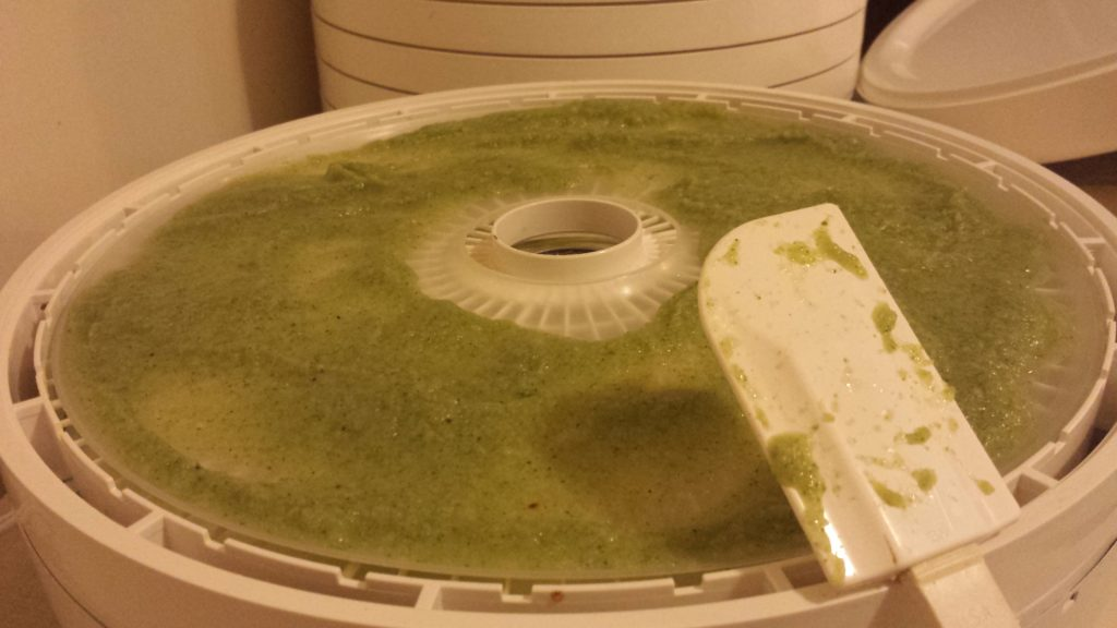 www.HomesteadingMom.com | How I Preserve Broccoli and Goat Cheese Soup | Broccoli puree | dehydrator