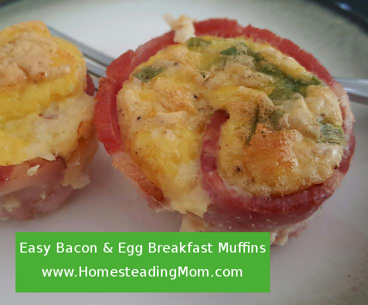 Easy Bacon and Egg Breakfast Muffin | www.HomesteadingMom.com