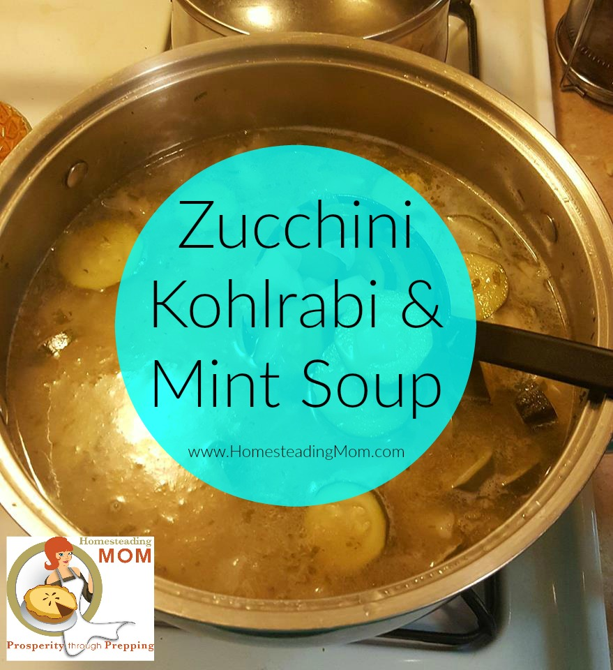 Zucchini, Kohlrabi, and Mint Soup