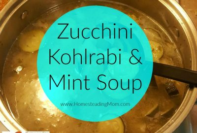 Zucchini kohlrabi mint soup Final